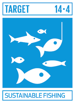 sdgs-14-4-life-below-water 海の豊かさを守ろう